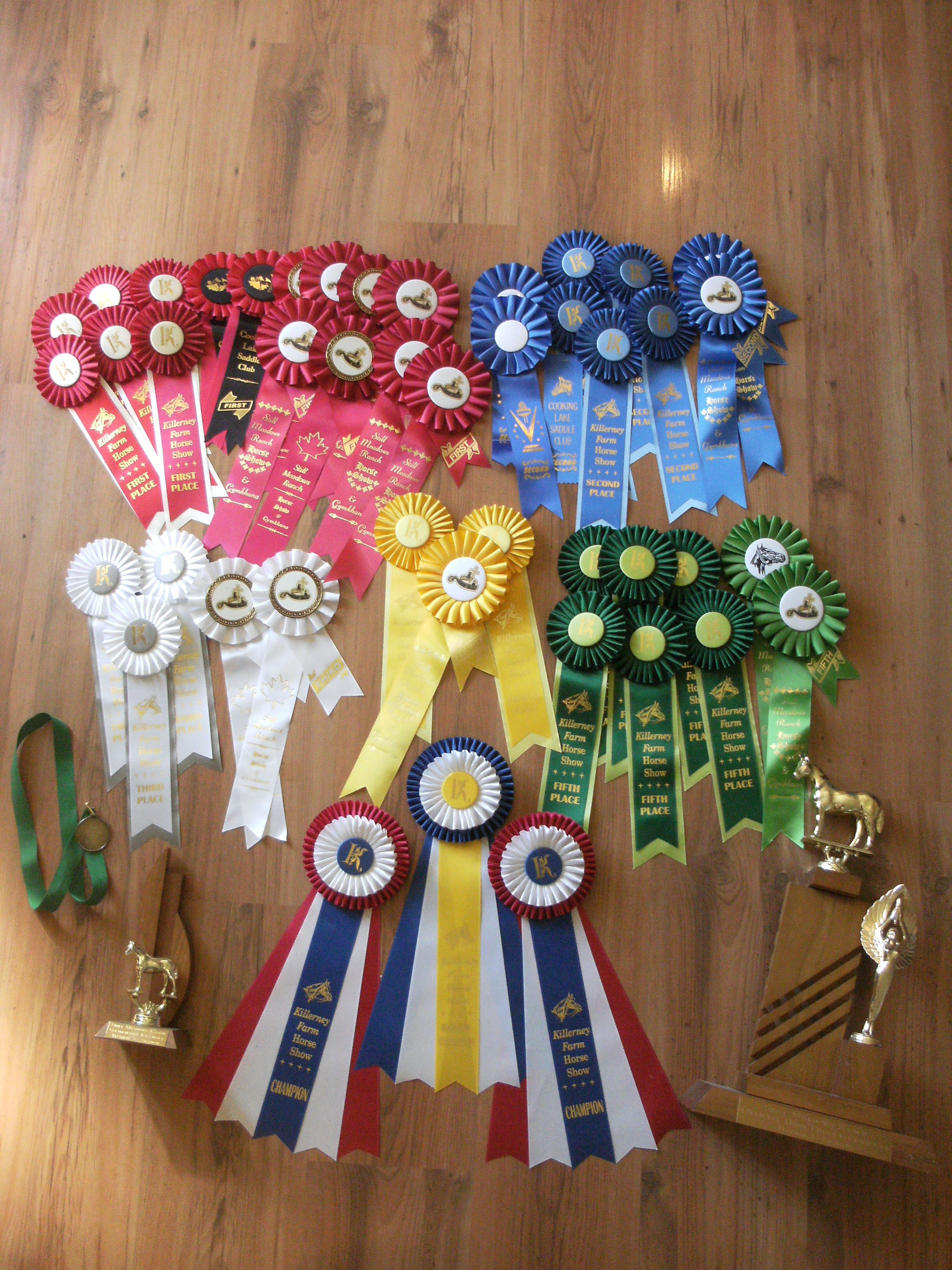 2010 Show Season - Some Ribbons Missing - They got put in a box, and I dont know what happened to it!